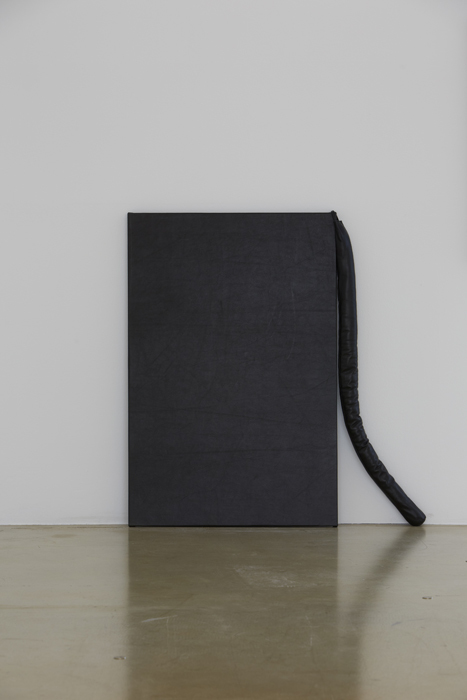 Doubles, Leather, thread, cotton, wooden frame, 90x82cm, 2014