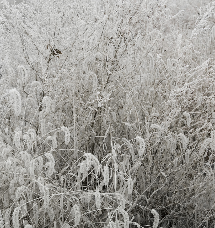 Honggoo Kang, Mist and Frost 2, Digital Print, 108x92cm, 2012, ONE AND J