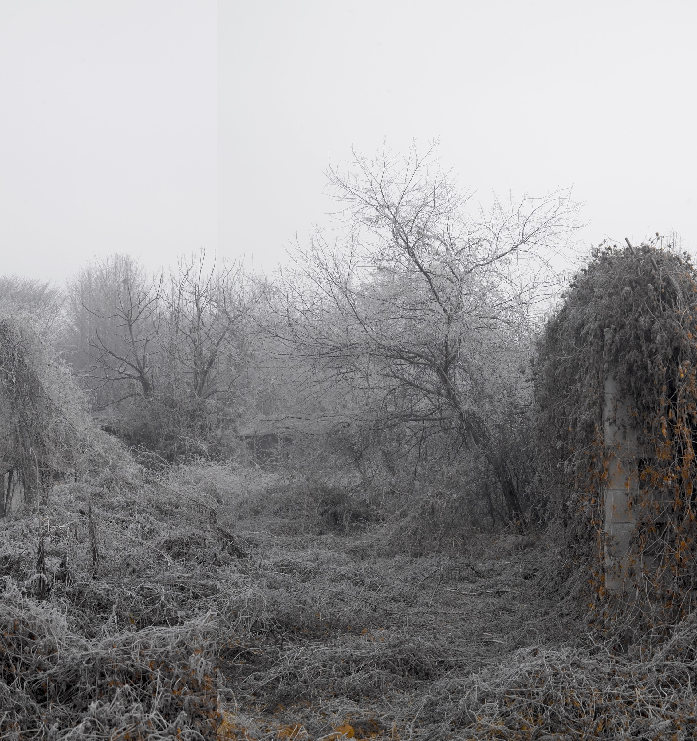 Honggoo Kang, Mist and Frost 3, Digital Print, 107x92cm, 2011, ONE AND J
