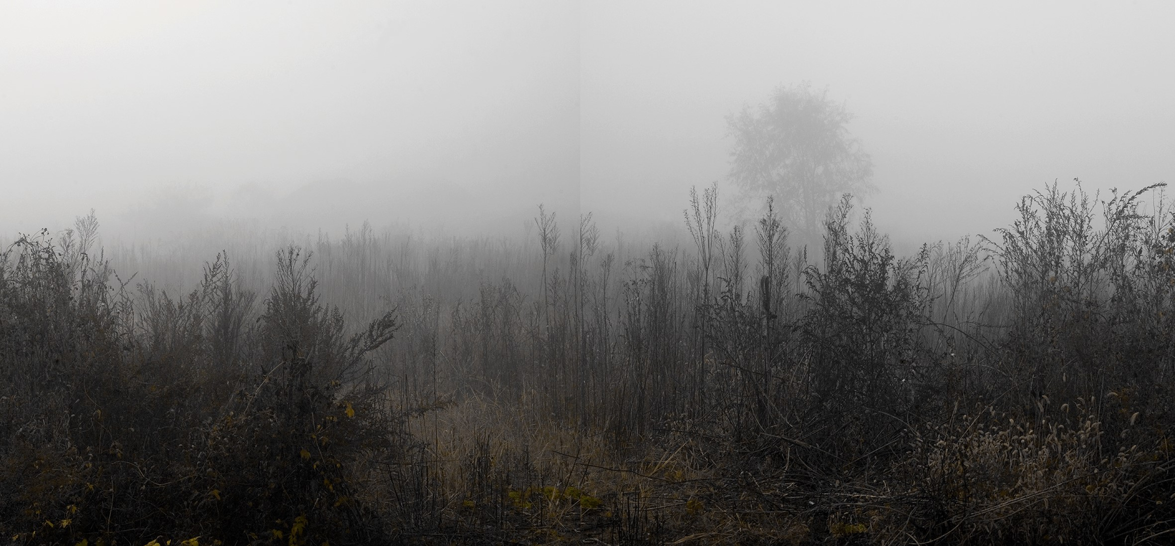 Honggoo Kang, Mist and Frost 38, Digital Print, 113x235.5cm, 2012, ONE AND J