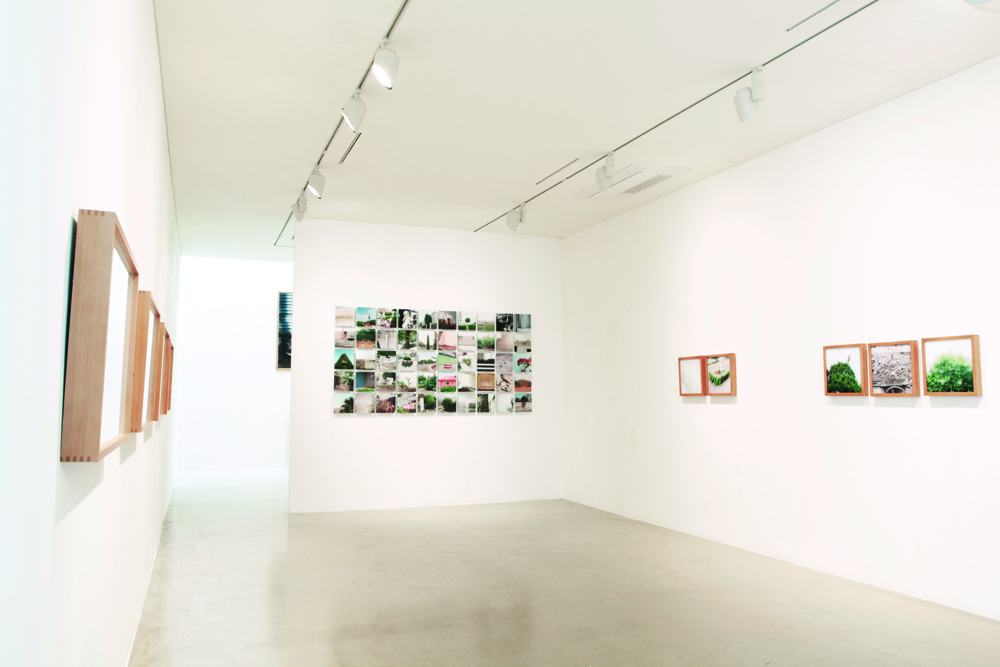 Joongho Yum, The taste of others, Installation view at ONE AND J.GALLERY, 2012