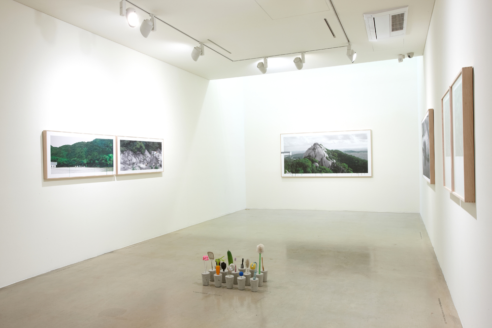 Honggoo Kang, Study of green, Installation view at ONE AND J.GALLERY, 2012