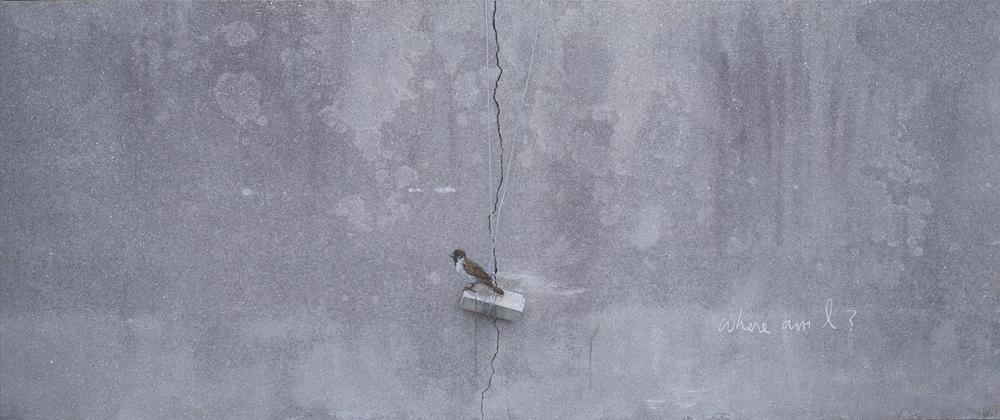 강홍구, 참새, 사진에 아크릴, 100x240cm, 2015, ONE AND J