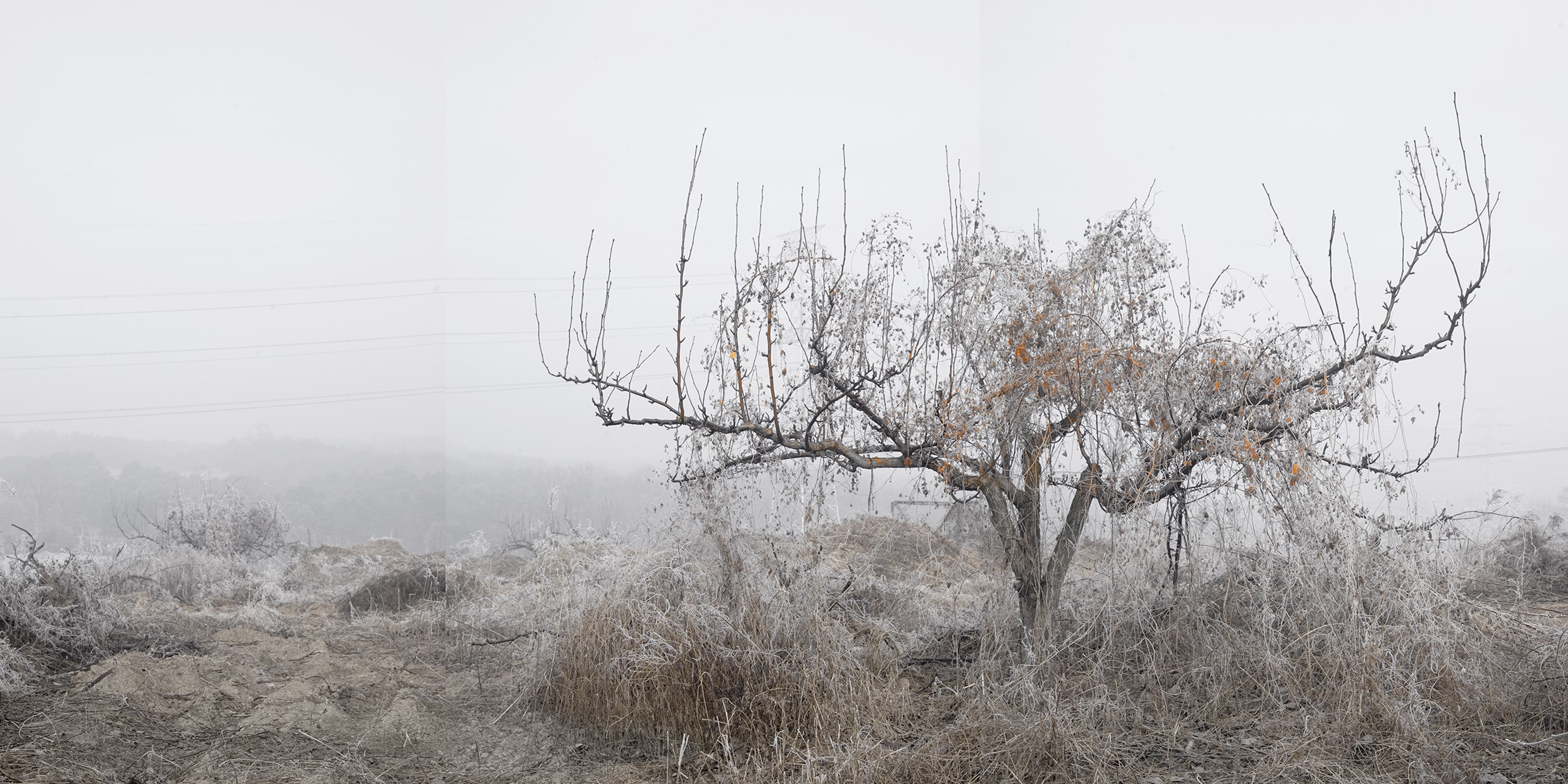 강홍구, 안개와 서리 17, 디지털 프린트, 98.5x178.5cm, 2011