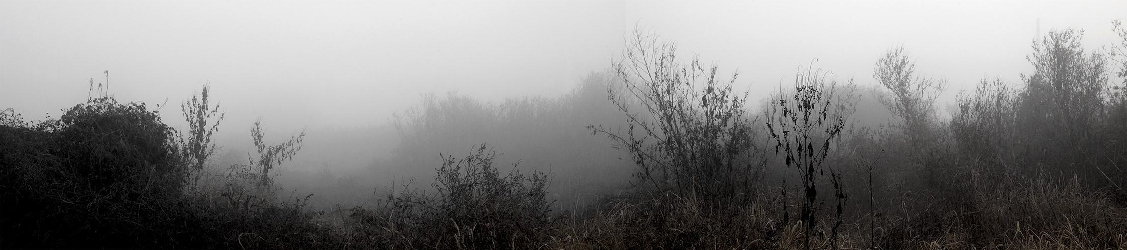 강홍구, 안개와 서리 22, 디지털 프린트, 40x146.5cm, 2011