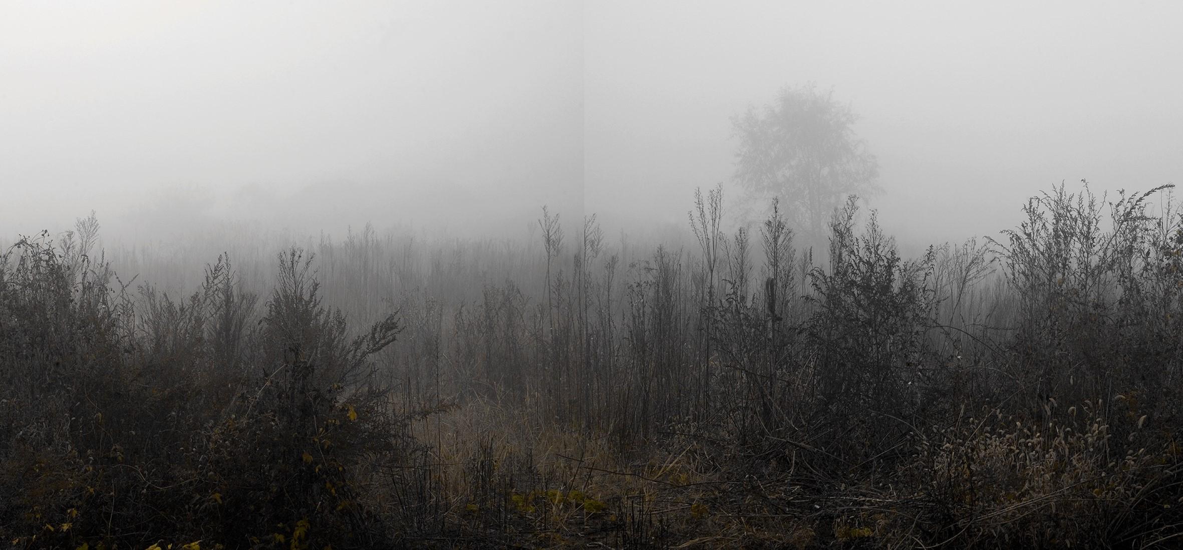 강홍구, 안개와 서리 38, 디지털 프린트, 113x235.5cm, 2012