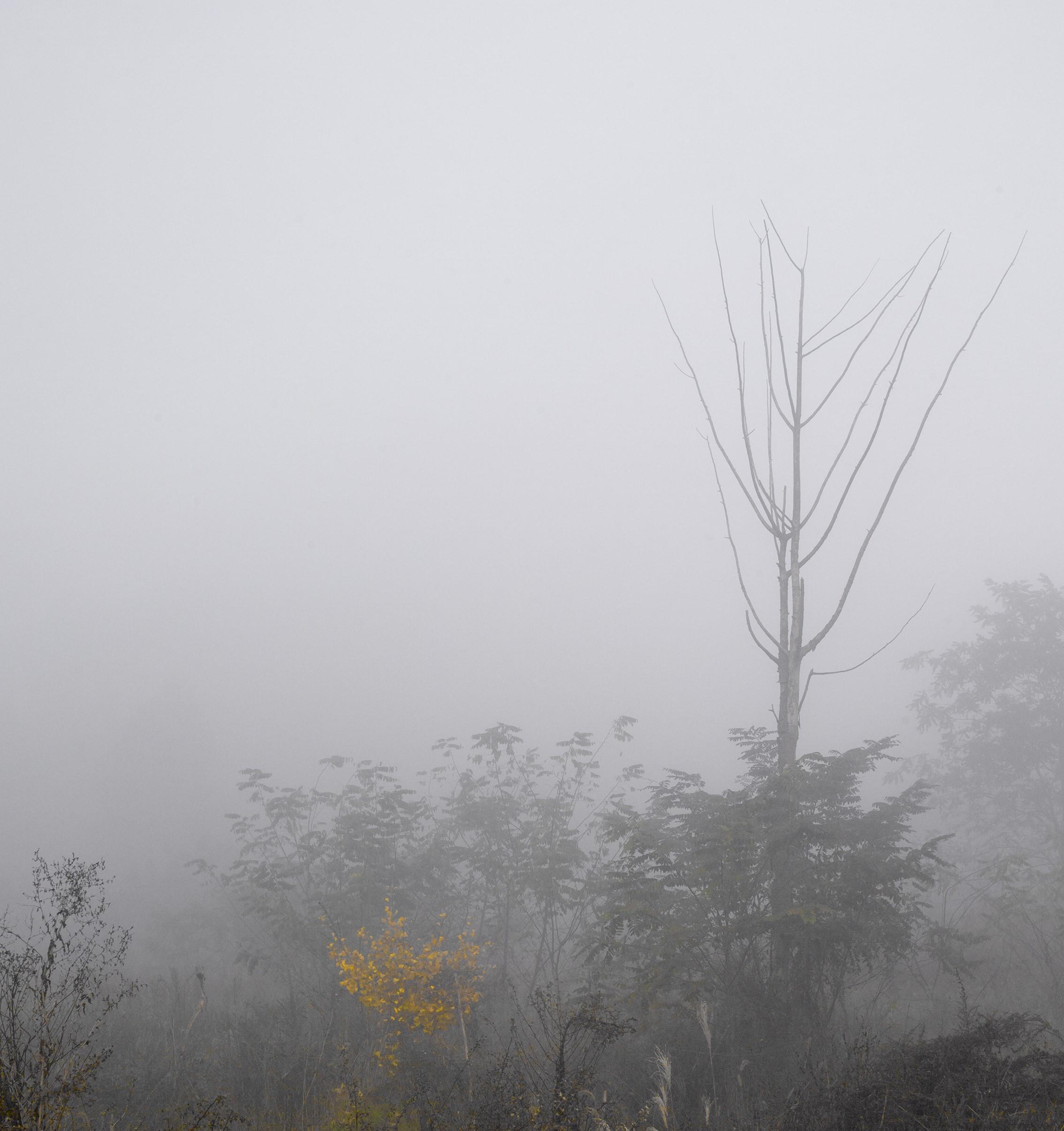 강홍구, 안개와 서리 4, 디지털 프린트, 107x92cm, 2008