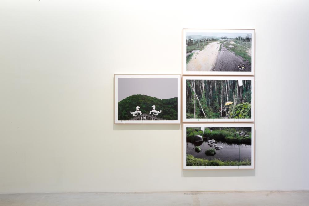 강홍구, 녹색 연구, 전시장 뷰, 2012