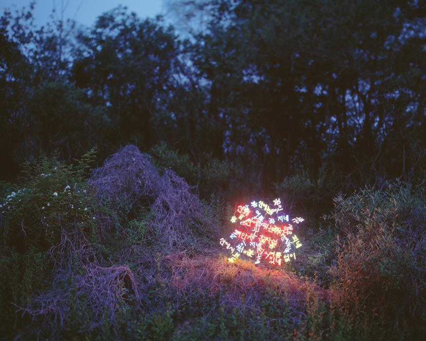 이정, 산유화, 김소월의 시, 디지털 C 프린트, 148x185cm, 2012