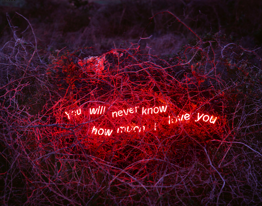 이정, You Will Never Know How Much I Love You, 디지털 C 프린트, Diasec, 100x125cm, 2014