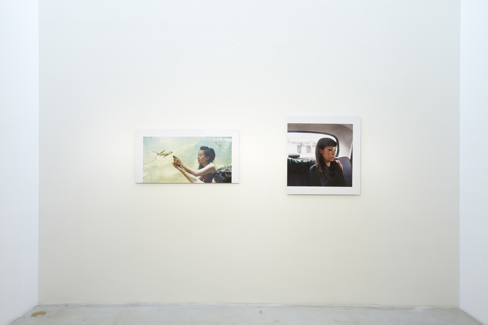 니키 리, Projects, parts, and layers, 전시장 뷰, 2011