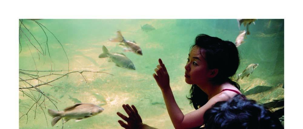 니키 리, 파트 (39), 디지털 C 프린트, 55.8x101.6cm, 2002-2003