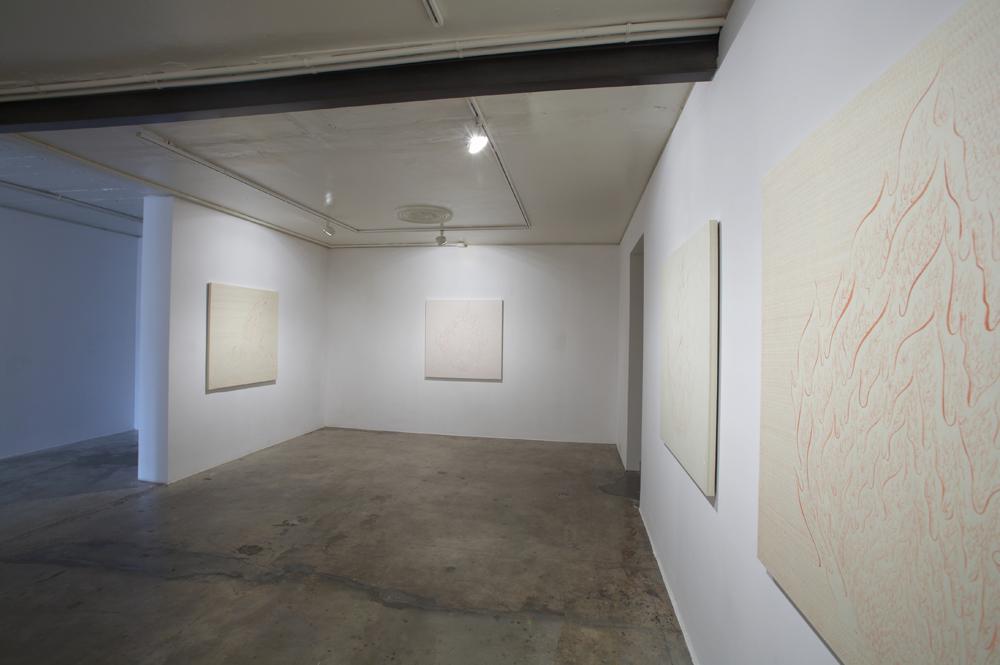 이수경, 불꽃, 전시장 뷰, 2006