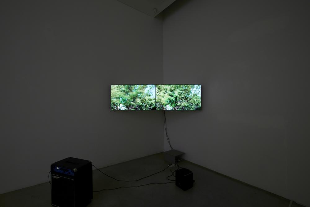김태윤, Wind with Sub-bass, 2 채널 비디오, 8분 44초, 컴퓨터, 베이스 앰프, variable size, 2014