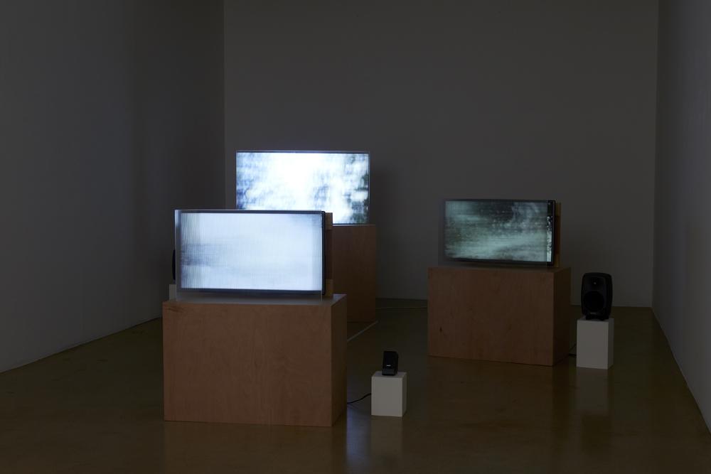 김태윤, Yosemite Overdub, 4채널 비디오, 6 비디오 랜덤 루프, variable size, 2014