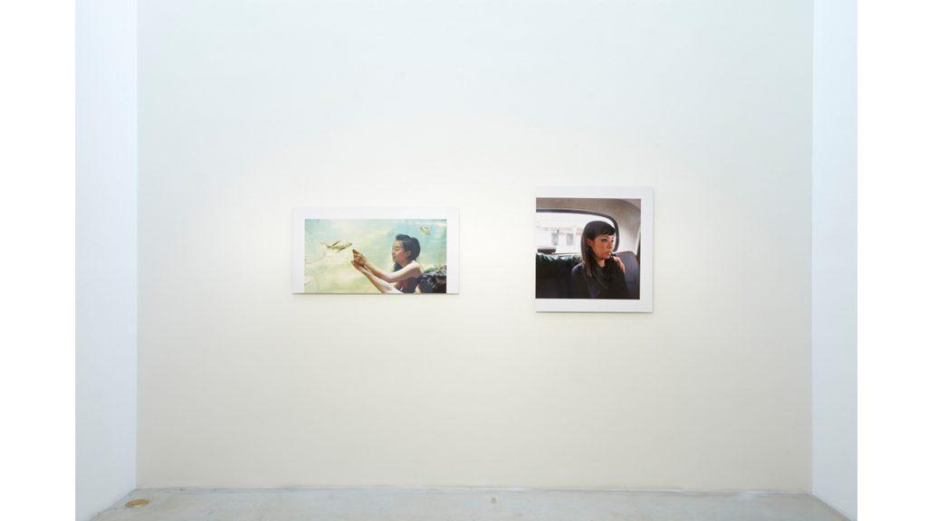니키 리, Projects, parts, and layers, 전시장 뷰, 2011