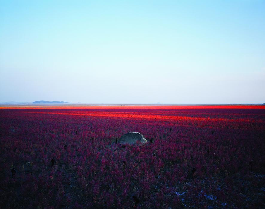 김윤호, (無名無明)(02), 디지털 C 프린트, 190X150cm, 2008